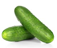 Cucumbers Carton